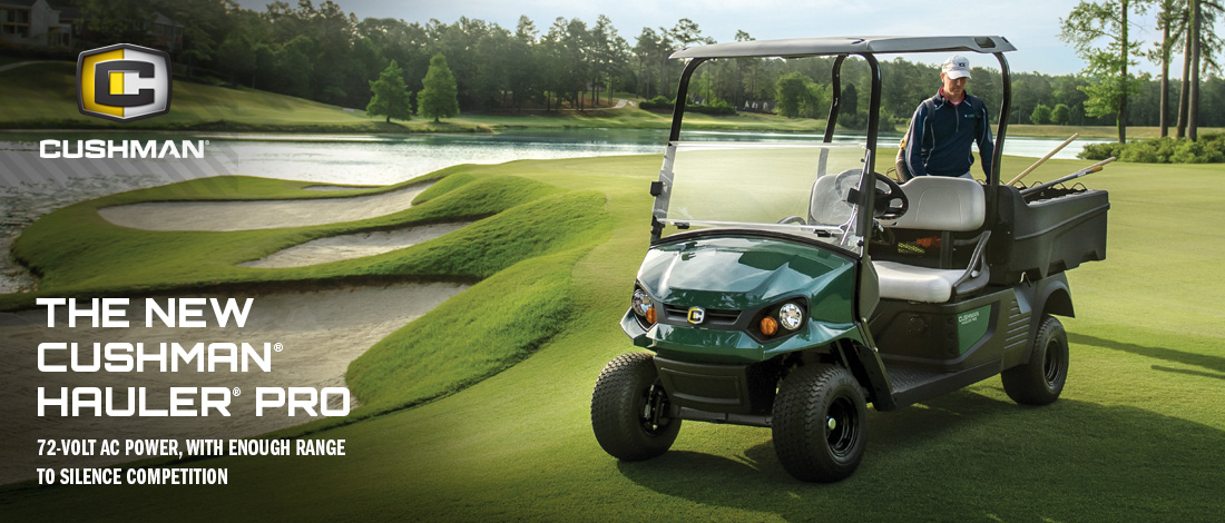 Home | Action Specialty Carts sells and rents golf carts