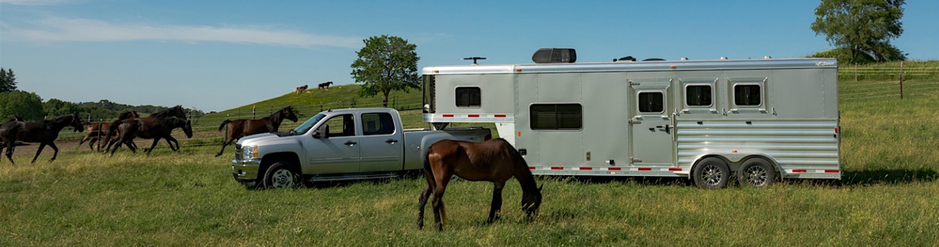 Moderigtigt Home | Livestock and Horse Trailers in NY | KeyRD 2, 3 and 4 Horse WV04